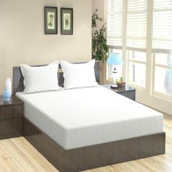 Trance Home Linen Cotton 400 TC Elasticated